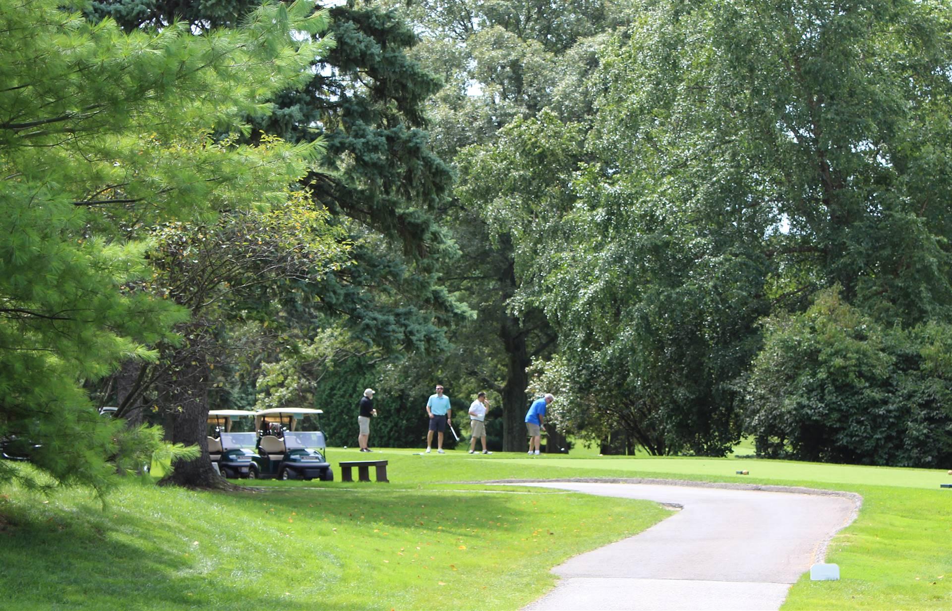 Golfers-on-tee